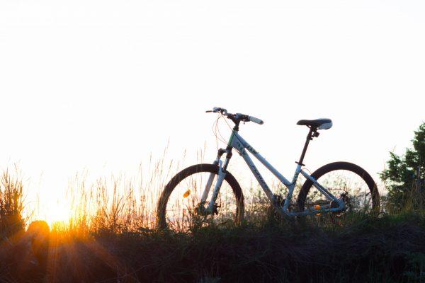 Fahrradverleih im Seeblick Engel